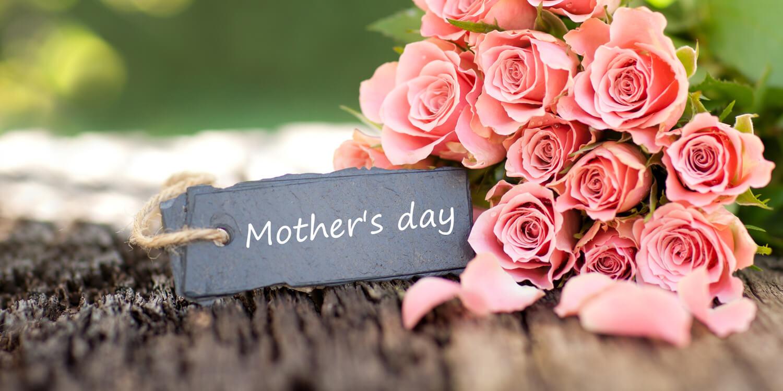 母の日 ピンクのバラ