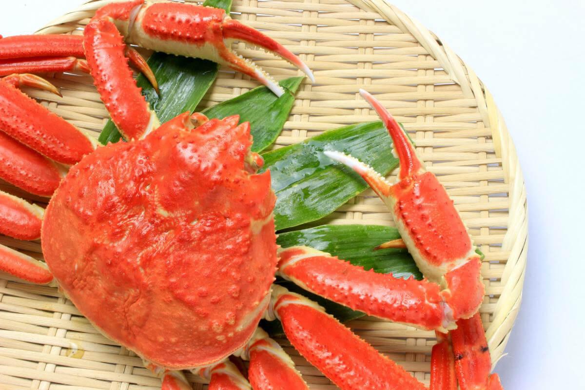 【母の日ギフト】カニ・蟹