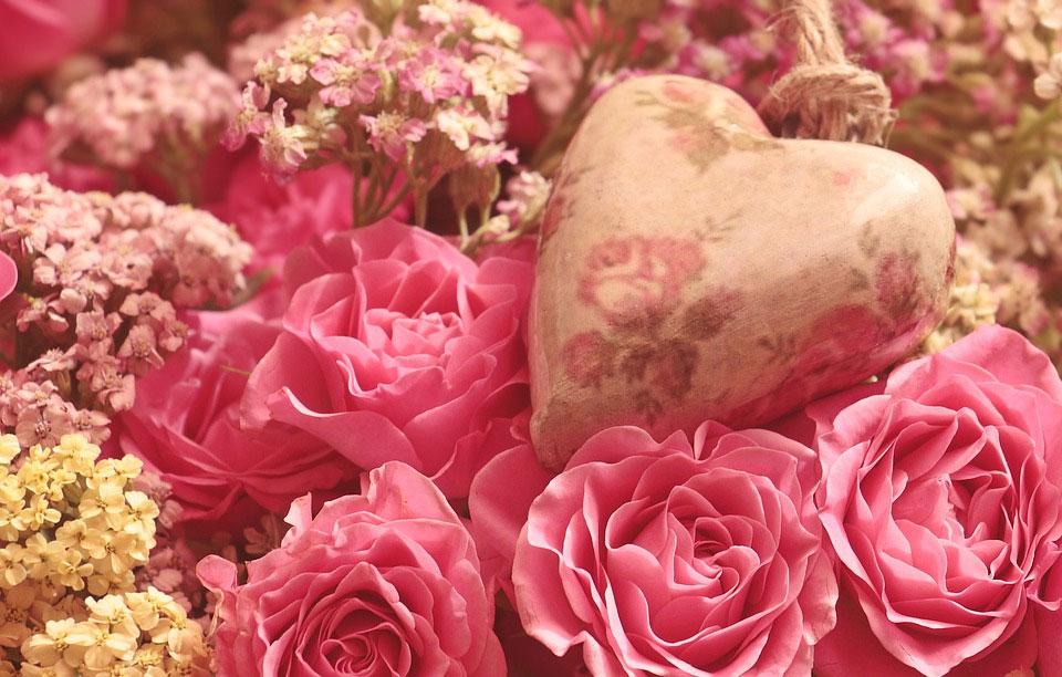 母の日に贈る人気のお花とは?