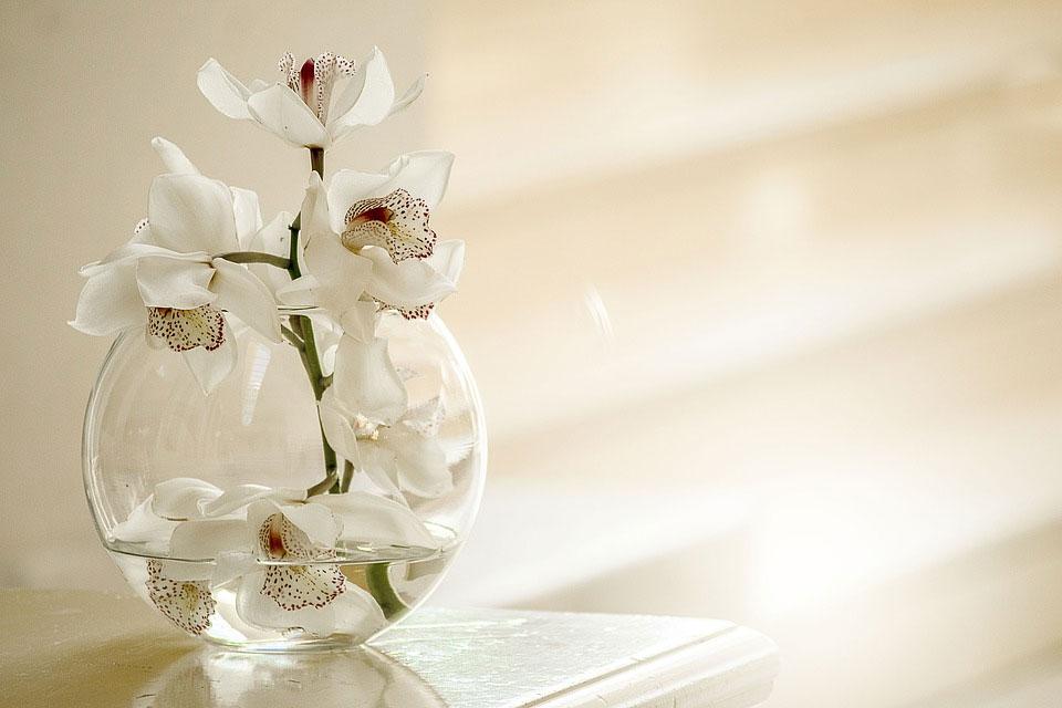母の日に贈るお花は生花?アレンジメントフラワー?